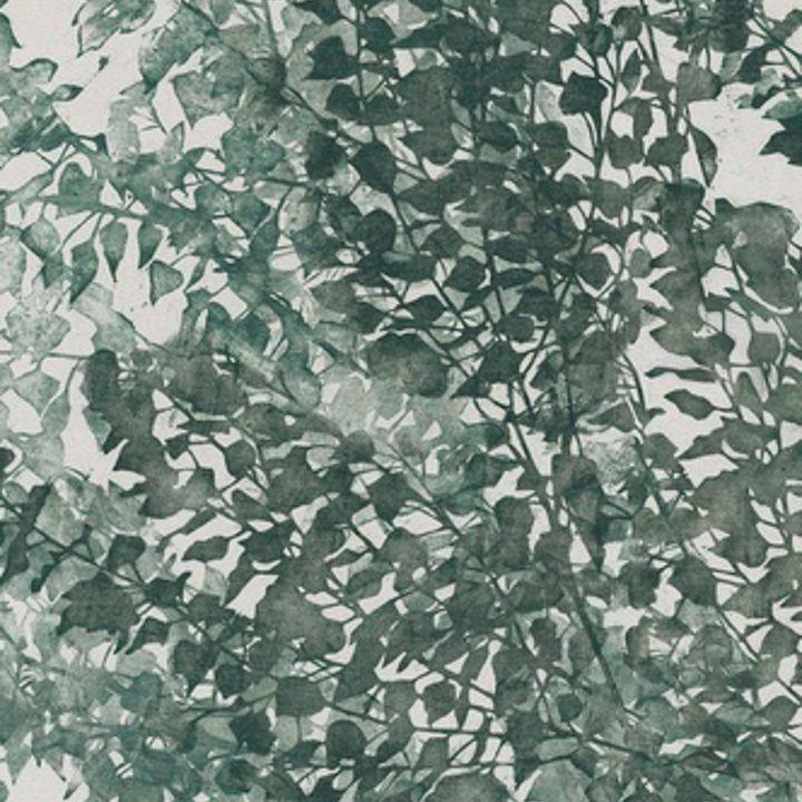 PIOPPO GREEN 02
