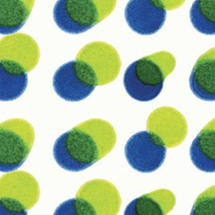 YAYOI BLUE/GREEN